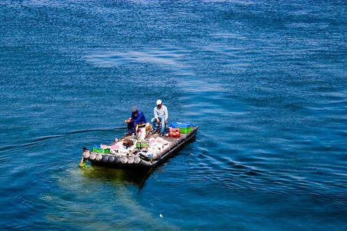 到屏東東港碼頭看海去 (7)