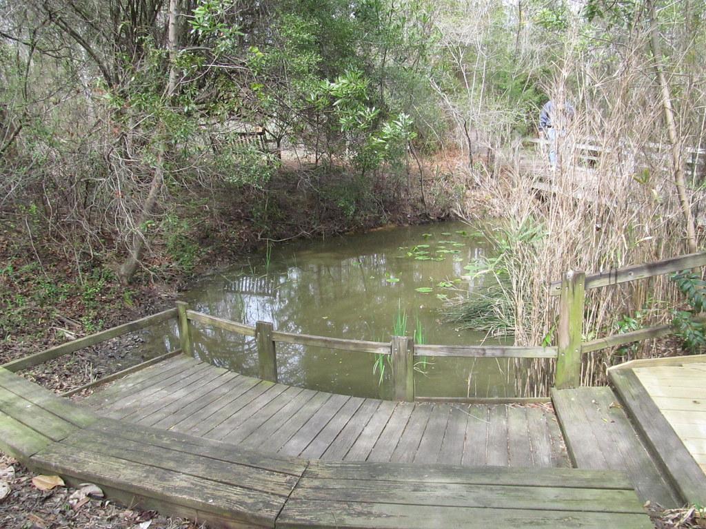 North Carolina Botanical Garden Chapel Hill North Carol Flickr