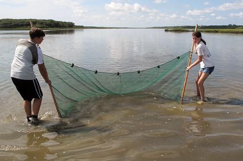 Students pulling seine net through Guana River
