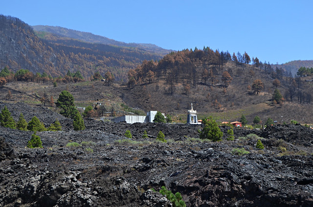 Forest fire damage, San Nicolas, La Palma