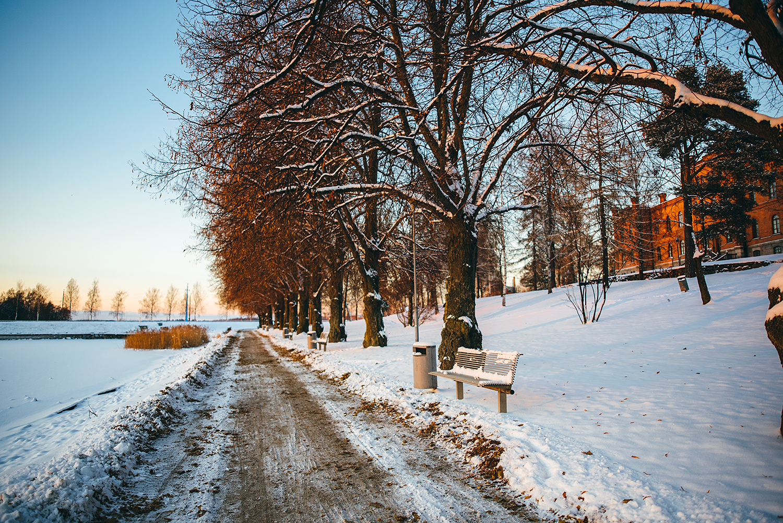 Talvivaasa3