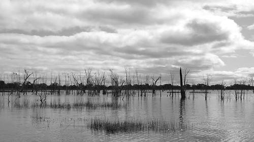 Lake Fyans (1)