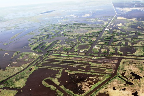 oil and gas canal damages to wetlands in louisiana by gulf restoration network