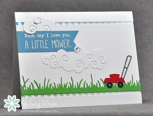 FMS A Little Mower