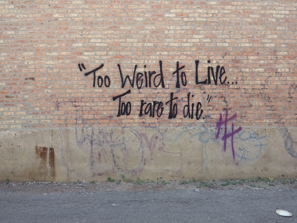 too weird to live, too rare to die | 2014, chicago, wicker ...