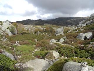 Au col Est du Pianu d'Urnucciu : la montée depuis le sentier des Bergers