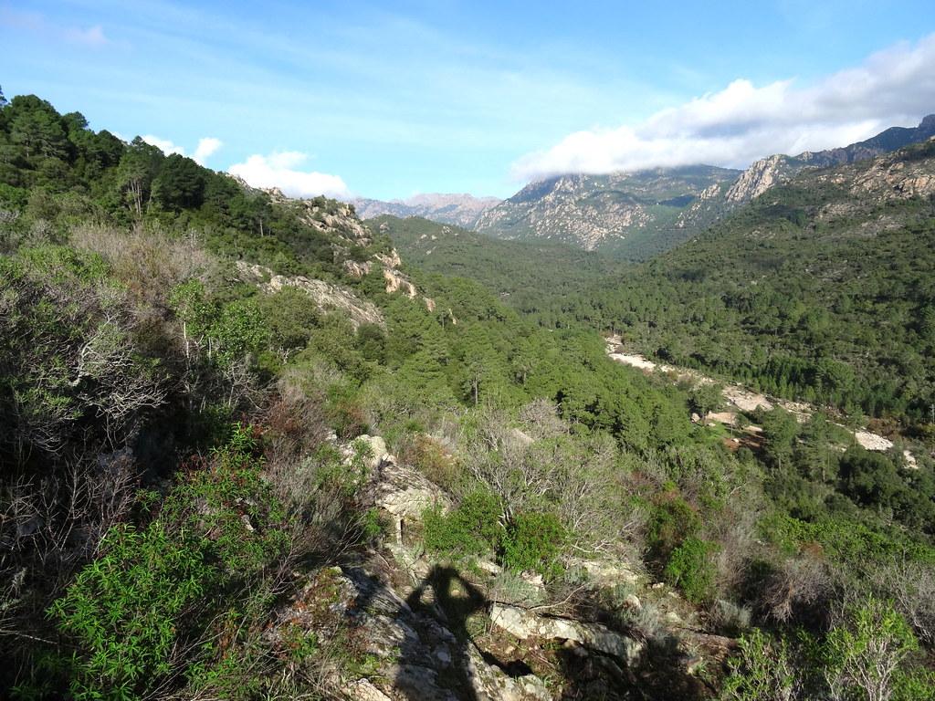Depuis la clairière du sentier de raccordement : le fond de la vallée du Cavu