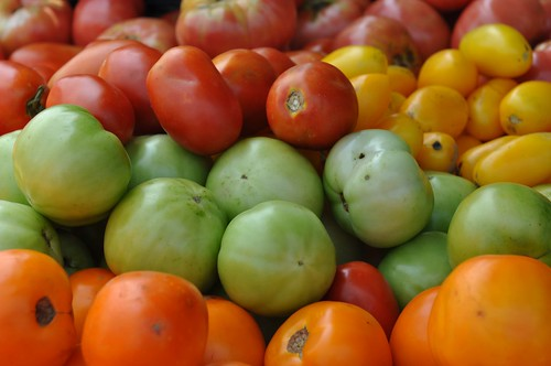 Fresh tomatoes for sale at the U.S. Department of Agriculture's (USDA) Farmers Market