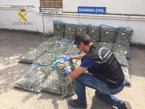 AionSur 29981935585_ee81e544aa_d La Guardia Civil desmantela un punto de venta de marihuana manufacturada al por mayor Los Palacios Provincia Sucesos
