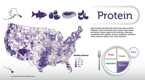 The Protein map