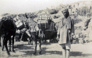 Indian muleteers