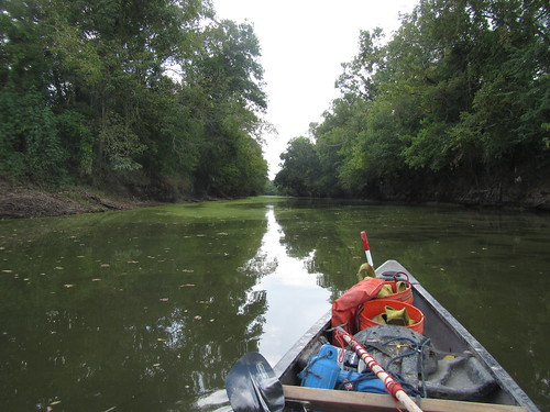 Clear Paddling