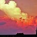 Dry-Tortugas-2016-Sunset