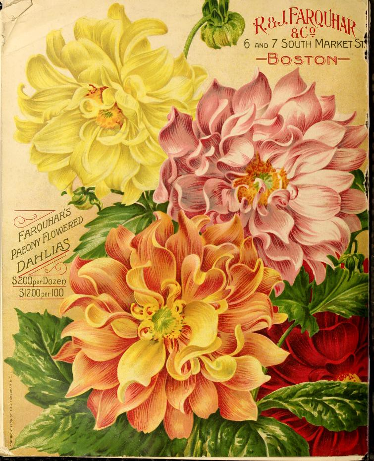 Flowered Up - Weatherall's Weekender