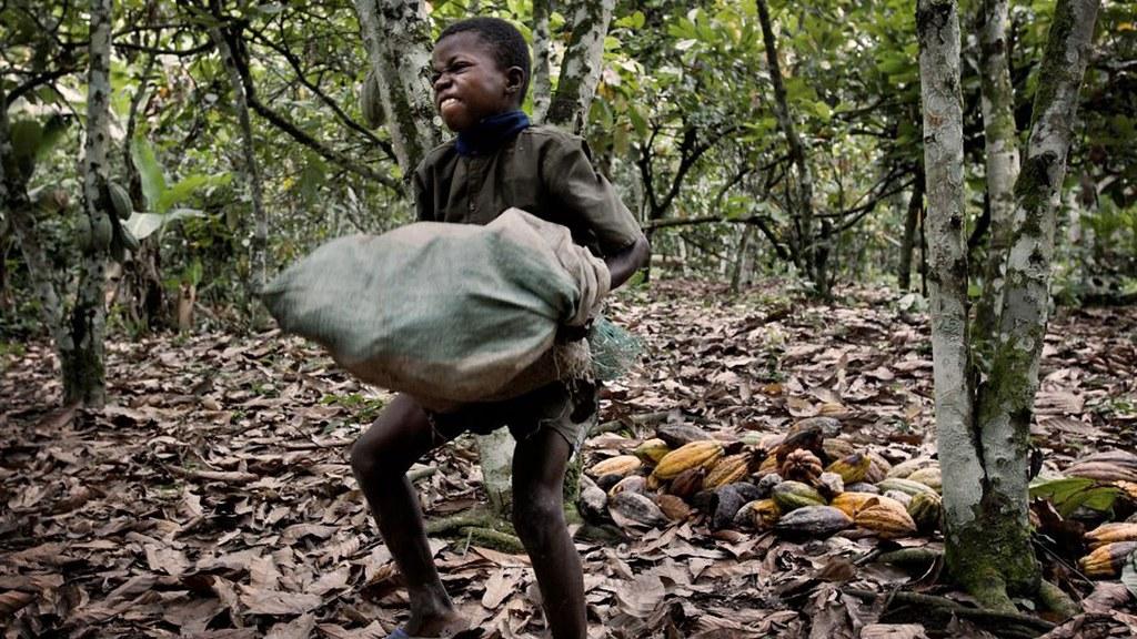 《巧克力的黑暗面》劇照。 圖片來源:輝洪開發股份有限公司