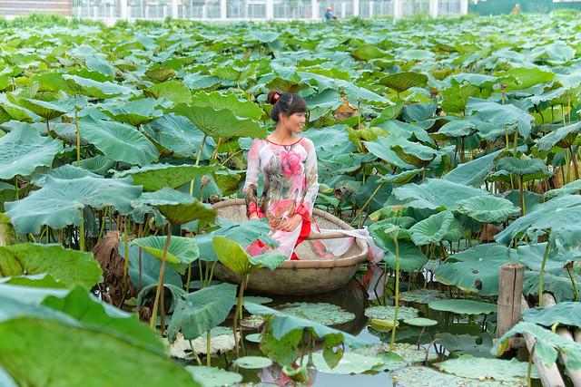 Vietnamese model in a lotus pond hanoi vietnam flickr for Garden pool hanoi