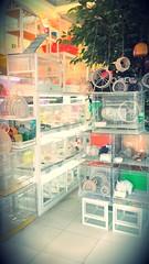 Shop hamster quận 8  Www.hamstermiendathua.vn