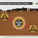 Decrease in Energy per Bushel of Soybeans Infographic