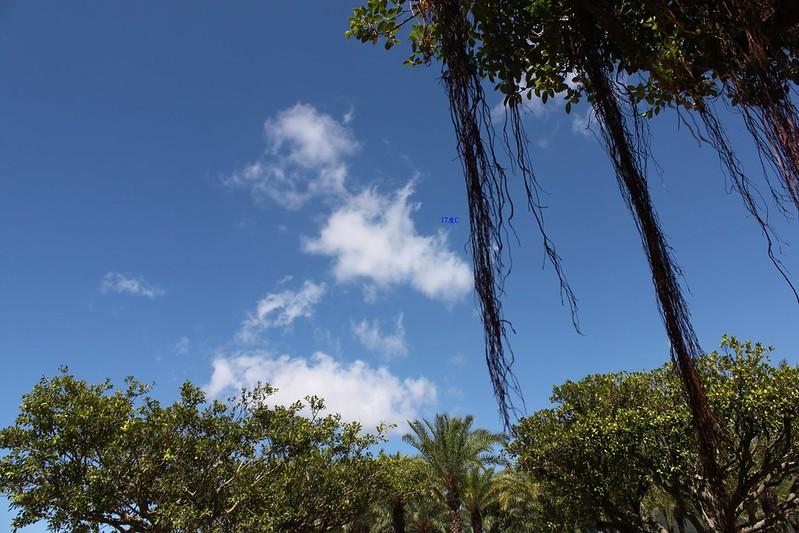 夏天。台北旅遊。八仙樂園 (22)