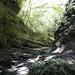 Small Gorge with Stream, Yoroukeikoku, Chiba