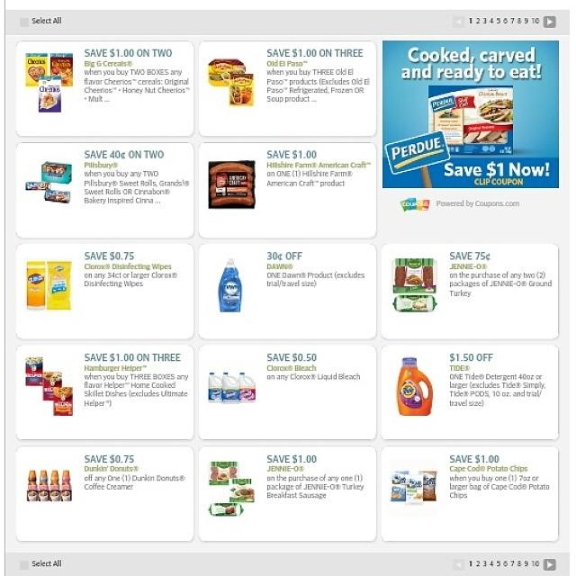 zenfolio online coupon codes tedi discount com bewerbung - Tedi Online Bewerbung