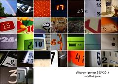 P365:2014 Mosaic Month 6 June by olivgrau