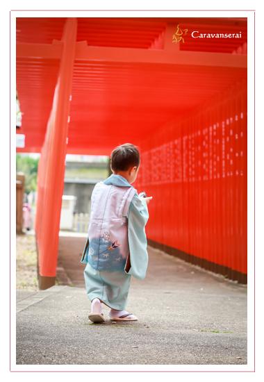 七五三詣り 出張撮影 深川神社 窯垣の小径 愛知県瀬戸市 着物 和装 男の子 全データ 写真館 フォトスタジオ