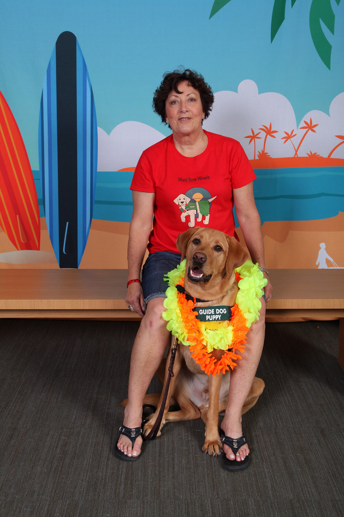 guide dogs for the blind california