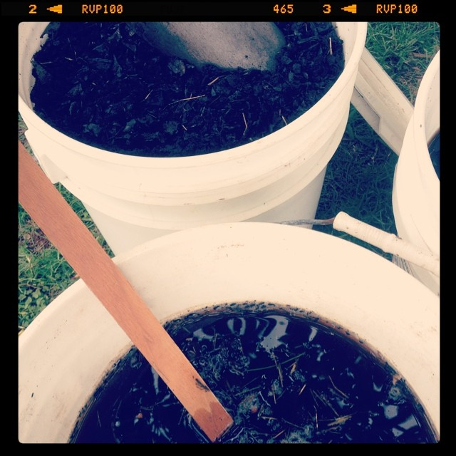 how to create compost tea