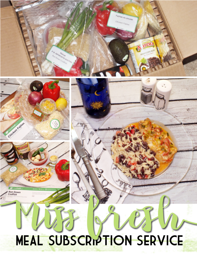 miss fresh meal subscription service (1)