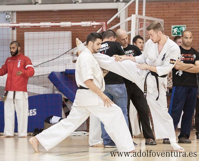 valencia karate: