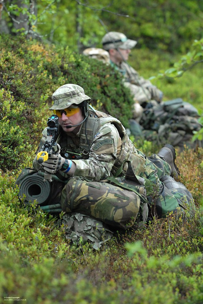 No Cold Air From Ac >> RAF Regiment Gunners of the RAF Reserve | RAF Regiment ...