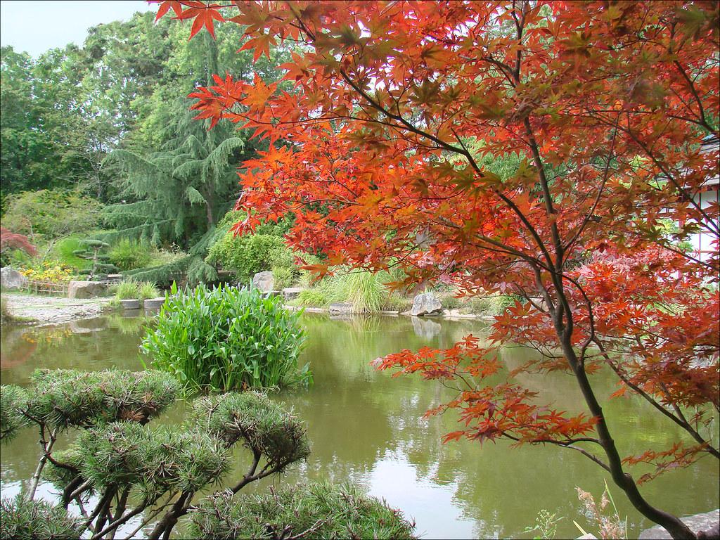 le jardin japonais le de versailles nantes photo annie flickr. Black Bedroom Furniture Sets. Home Design Ideas