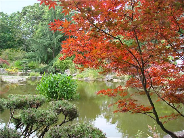 Le jardin japonais le de versailles nantes flickr photo sharing for Jardin japonais nantes
