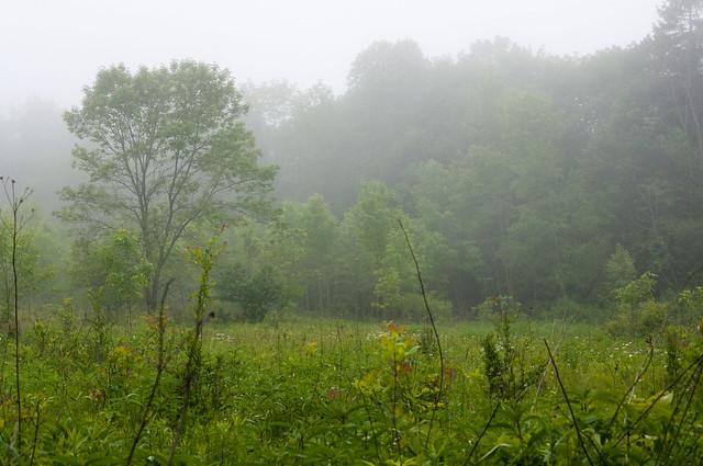 Schlitz Audobon Nature Center Hiking