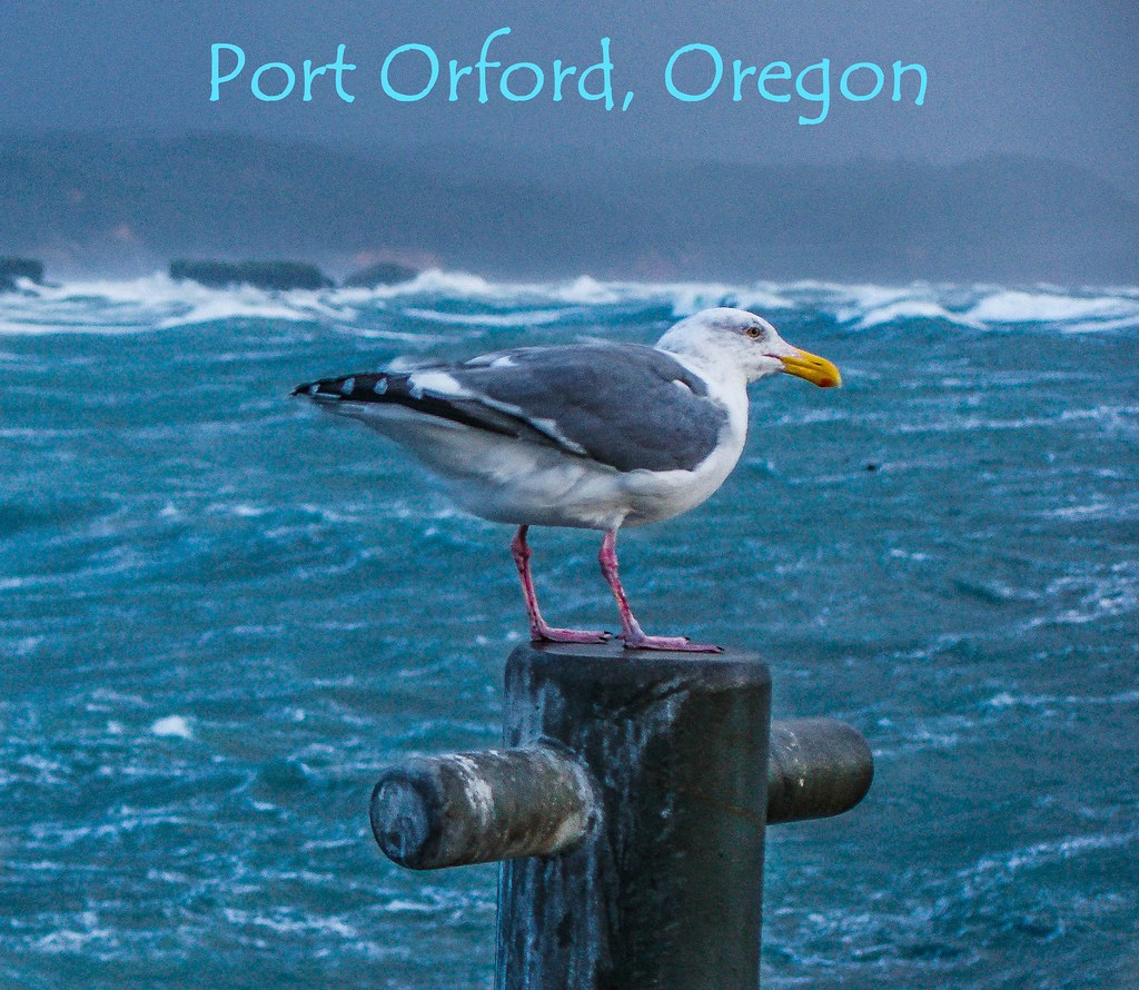 port orford online dating Port orford, oregon: where life slows to a crawl don't be in a hurry when you visit you will miss a lot  port orford public library  motoring on the beaches is an oregon tradition dating back to the late 1800s when the motors were horses drawing wagons.