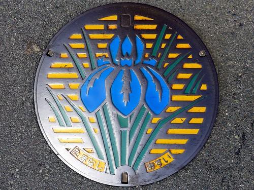 Tamana Kumamoto, manhole cover (熊本県玉名市のマンホール)
