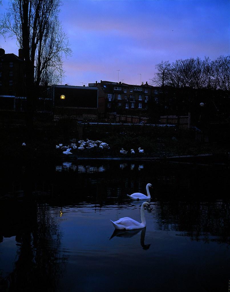 Tom hunter 39 swan song 39 2002 tom hunter royal opera for House music 2002
