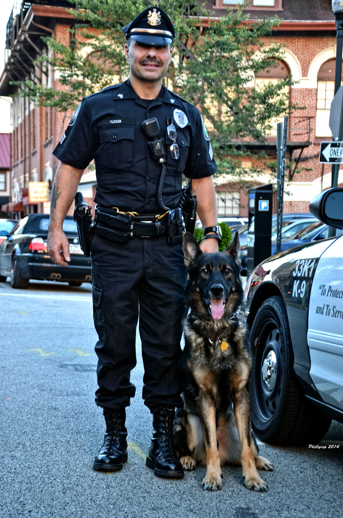 "Jenkintown Police Department- ""Rocky"" | Jenkintown police's … | Flickr"