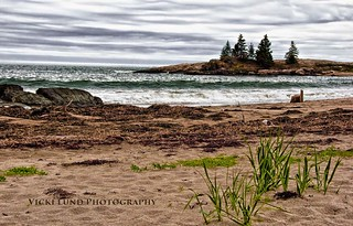 Beautiful Coast of Maine | by Vicki Lund Photography