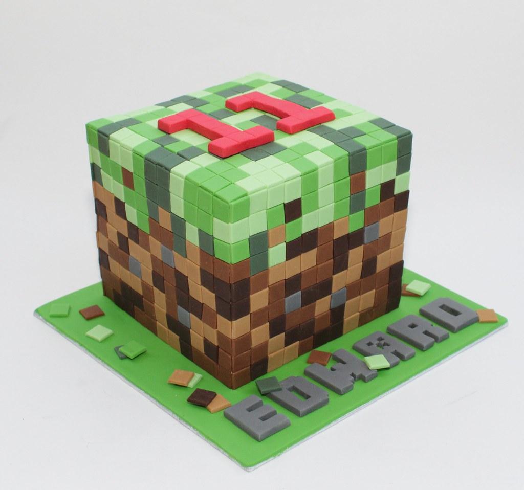 Minecraft Birthday Cake Pan
