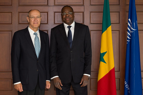 WIPO Director General Meets with Senegal's Foreign Minister | by WIPO | OMPI