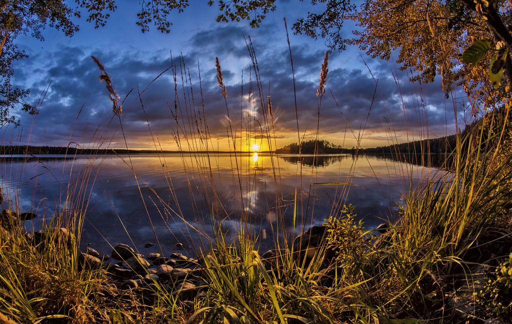 Evening rays