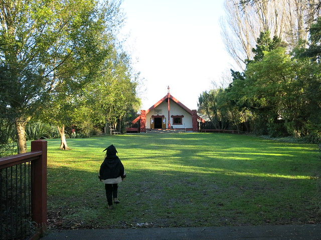 Rehua Marae, St Albans, Christchurch. Saturday 28 June 2014