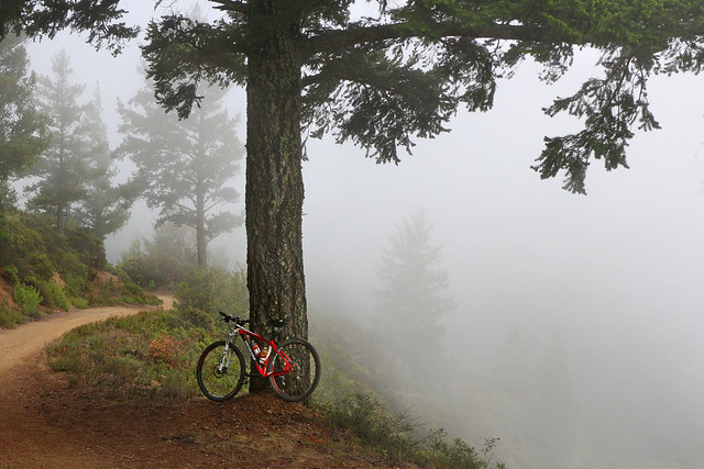 Mountain bike, San Geronimo Ridge
