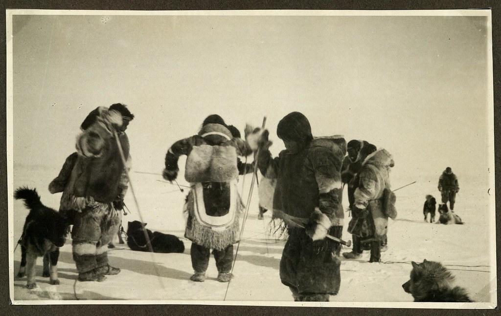 netsilikinuit p229 fangst a netsilik inuit hunting flickr
