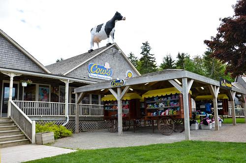 Cows Ice Cream - Cavendish (#1)
