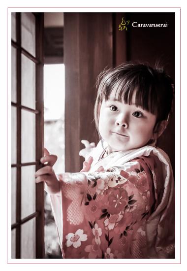 八事山興正寺で七五三後撮り写真の撮影 ロケーションフォト 名古屋市昭和区 フォトスタジオ 写真館 竹翠亭 自然な 全データ 着物 女の子