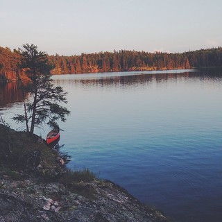 Serene view from the camp as the sunset begins to burn into the neighbouring pines. #vscocam | by josiahwiebe