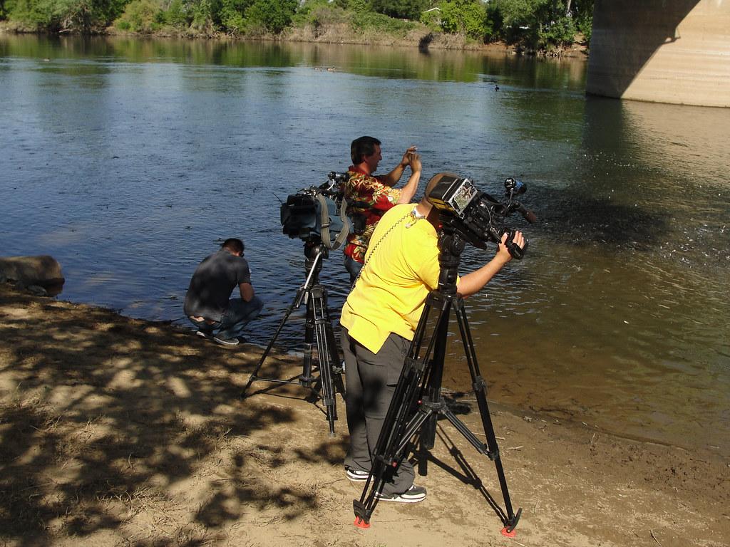 450 tv news crews cover 2011 ar smolt release sacramento for California department of fish and wildlife jobs